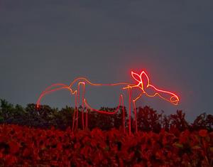 horseformb.jpg